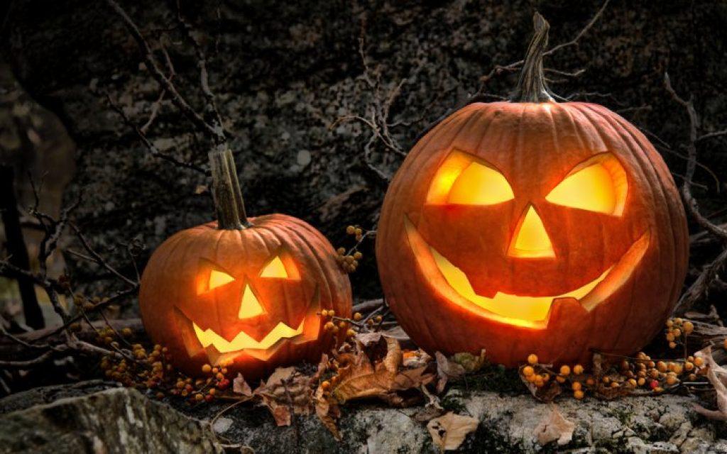 About Beauty Zucca Halloween