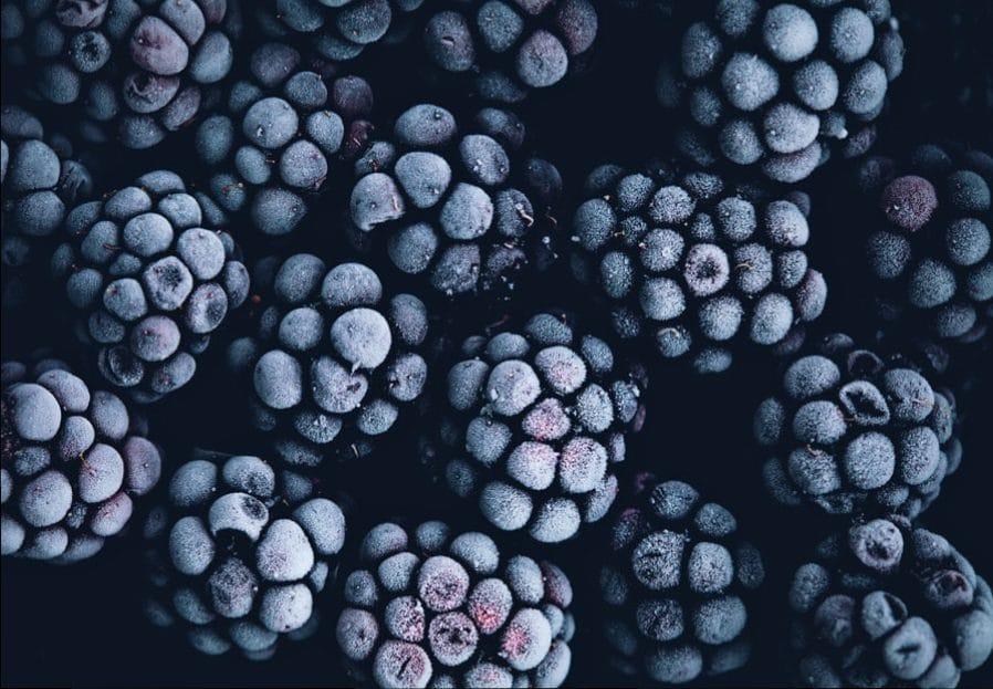 Frutti di bosco: virtù, proprietà nutrizionali, ricette - More