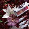 La nuova Erdem for NARS Strange Flowers Collection